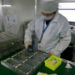 iPhone 6s 用フロントパネル部品の製造現場から