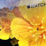 英国 Selfridges、Apple Watchの新しいウインドウディスプレイ